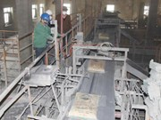 越南建材市场保持稳定