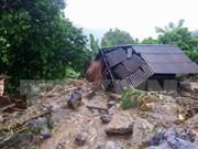日本政府向遭受洪灾影响的越南灾区提供紧急援助