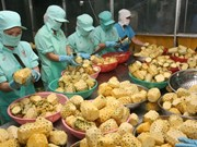 为越南农产品进军中东市场铺路
