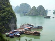 广宁省加强下龙湾环境保护工作