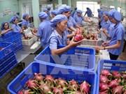 今年前10月越南果蔬出口总额约达28.4亿美元