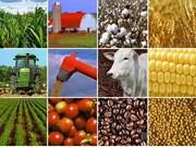 越南与巴西农业与旅游合作潜力巨大