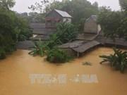 """强台风""""达维""""造成越南44人死亡19人失踪 经济损失惨重"""