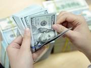 13日越盾兑美元中心汇率下降3越盾