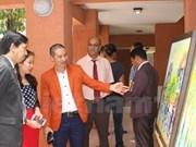 越南在南非加大文化艺术和美食推介宣传力度
