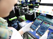 2017年前10个月越南对APEC其它成员经济体的手机出口额达190.1亿美元