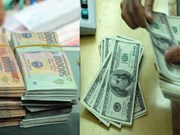 17日越盾对美元中心汇率下降3越盾
