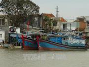 第十四号台风即将登陆越南  中央预防自然灾害指导委员会下发关于抗暴的通知