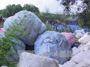 关于防范危险废物跨境非法转移的研讨会在河内举行