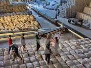 阿根廷希望加大对越的粮食出口力度