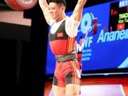 2017年举重世锦赛:越南举重队获4金 暂居奖牌榜榜首