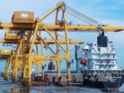 Vinalines与Rent-A-Port公司在海防港兴建谷物进出口专用码头