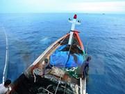 越中海上低敏感领域合作专家工作组第10轮磋商在北京举行