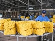 越南橡胶出口增速反弹