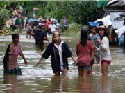 """台风""""启德""""登陆菲律宾 造成至少26人死亡"""