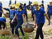 越南青年在保护环境和应对气候变化中发挥先锋作用