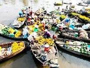 越南被列为九大冬季度假最佳目的地之一