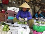 前江省公布向美国市场出口首批新鲜金星果
