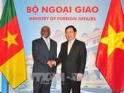 进一步加强越南与喀麦隆关系