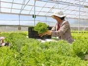 茶荣省提出9大措施来推动2018年经济社会发展
