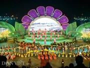 2017年第七届大叻花卉节落下帷幕