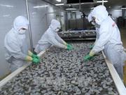 越南水产品出口面临许多挑战