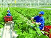吸引企业投入农业农村