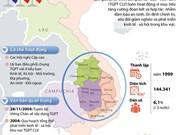 得乐省多家企业加大对老柬两国农林业项目投资力度
