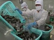 越南对欧盟的虾类出口前景乐观