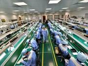 2018年1月份越南新成立企业数量猛增