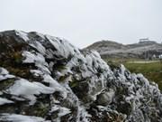 北部和北中部各省市主动采取措施应对严寒天气和寒害影响