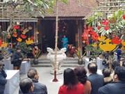 河内传统春节空间吸引外国游客的眼球