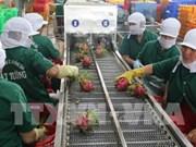 前江省出口额大幅增长