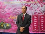 旅居海外越南人兴高彩烈迎新春