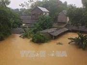 回顾2017年越南防灾减灾工作