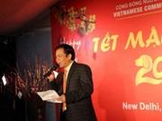 越南驻印度和荷兰大使馆举办多项新春迎新活动