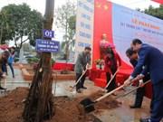 河内市委书记黄忠海出席植树节启动仪式