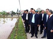 越南政府总理阮春福视察南定省农民生产模式