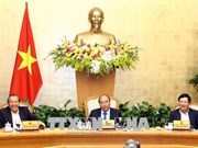 政府总理阮春福:新年伊始就激发农民和企业的生产积极性