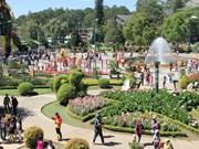 2018年春节假期林同省大叻市接待游客量28万多人次
