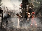 印度尼西亚因森林火灾而进入紧急状态