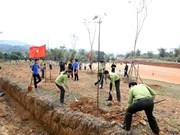推进植树和造林工作  努力保护环境