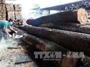 2018年木材和木制品的出口情况