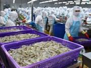 澳大利亚代表团赴越考察虾类出口生产加工情况