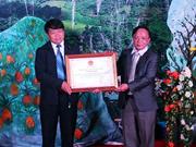 奠边省赫蒙族传统服饰纹样造型艺术被列入国家非物质文化遗产名录