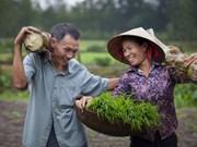 越南在性别平等领域取得巨大成就