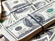 7日越盾兑美元中心汇率下降5越盾