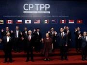 越南驻智利大使:CPTPP将为越智经贸与投资合作注入强劲动力