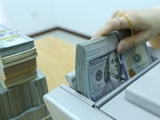 16日越盾兑美元中心汇率上涨5越盾