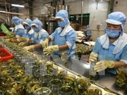 越南积极提高蔬菜鲜果质量  挺进日本市场